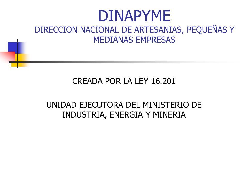 DINAPYME DIRECCION NACIONAL DE ARTESANIAS, PEQUEÑAS Y MEDIANAS EMPRESAS CREADA POR LA LEY 16.201 UNIDAD EJECUTORA DEL MINISTERIO DE INDUSTRIA, ENERGIA