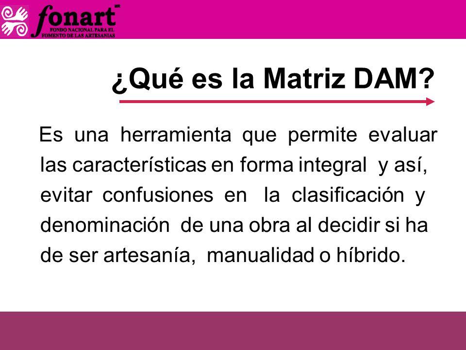 ¿Qué es la Matriz DAM? Es una herramienta que permite evaluar las características en forma integral y así, evitar confusiones en la clasificación y de