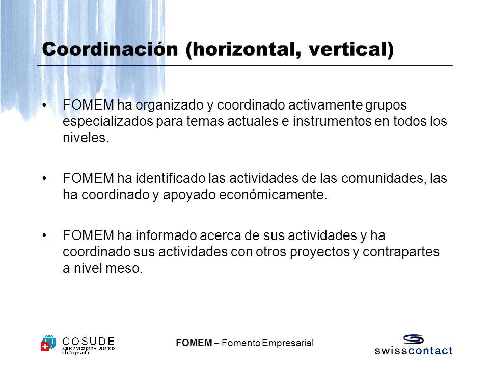 FOMEM – Fomento Empresarial Coordinación (horizontal, vertical) FOMEM ha organizado y coordinado activamente grupos especializados para temas actuales e instrumentos en todos los niveles.