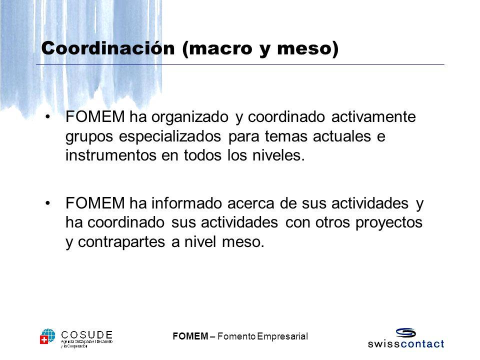 FOMEM – Fomento Empresarial Coordinación (macro y meso) FOMEM ha organizado y coordinado activamente grupos especializados para temas actuales e instrumentos en todos los niveles.