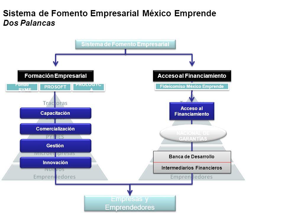 Acceso al Financiamiento Formación Empresarial Banca de Desarrollo Intermediarios Financieros Banca de Desarrollo Intermediarios Financieros Comercial