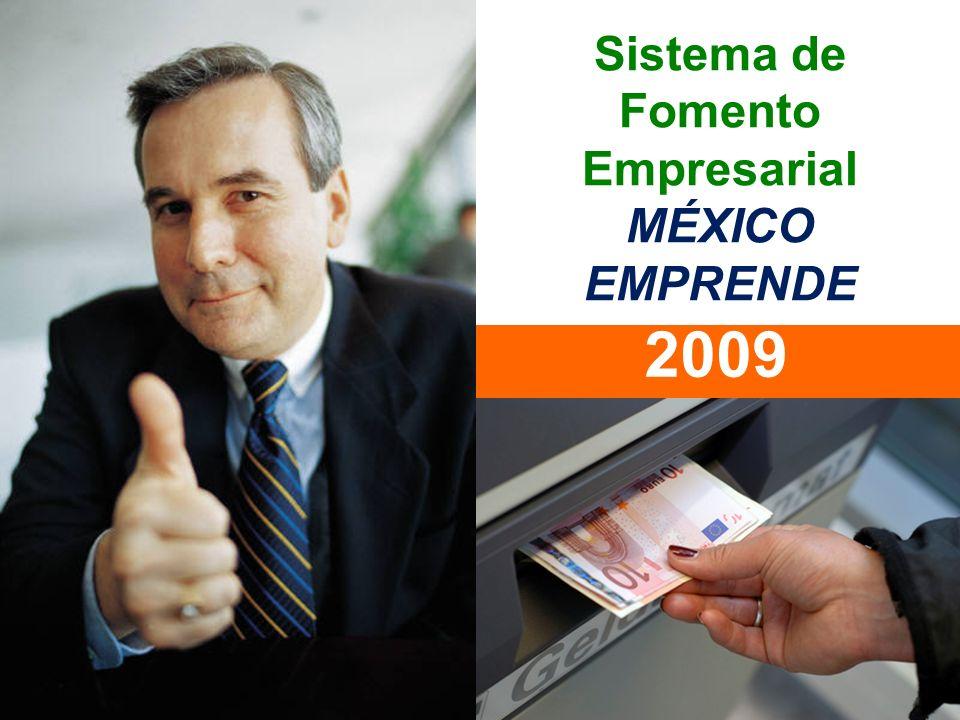 Sistema de Fomento Empresarial MÉXICO EMPRENDE 2009
