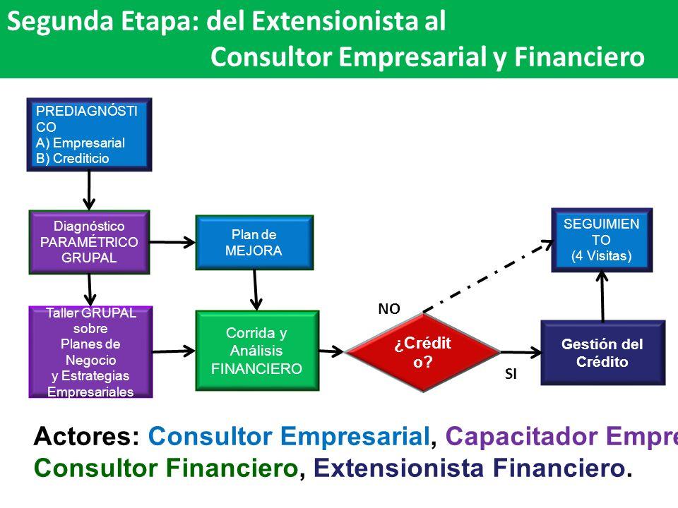 Segunda Etapa: del Extensionista al Consultor Empresarial y Financiero SEGUIMIEN TO (4 Visitas) Plan de MEJORA Corrida y Análisis FINANCIERO Diagnósti