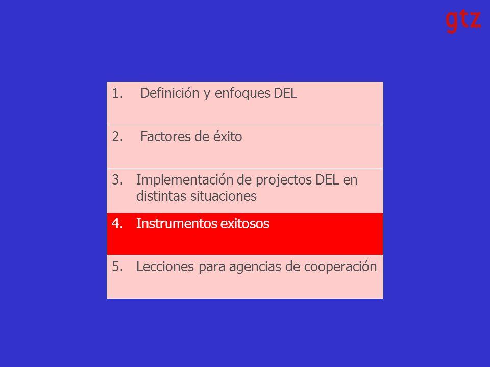 1.Definición y enfoques DEL 2.Factores de éxito 3.Implementación de projectos DEL en distintas situaciones 4.Instrumentos exitosos 5.Lecciones para agencias de cooperación