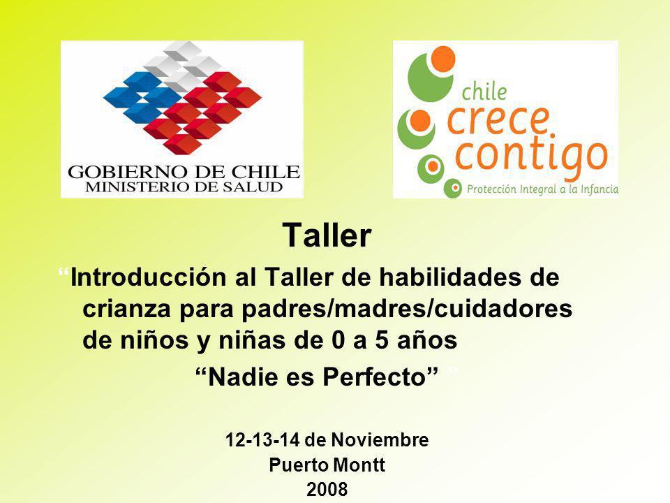 Taller Introducción al Taller de habilidades de crianza para padres/madres/cuidadores de niños y niñas de 0 a 5 años Nadie es Perfecto 12-13-14 de Noviembre Puerto Montt 2008