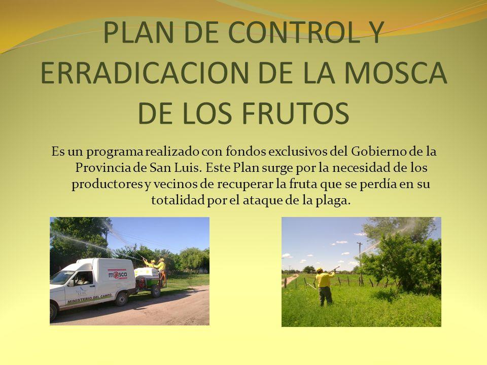 PLAN DE CONTROL Y ERRADICACION DE LA MOSCA DE LOS FRUTOS Es un programa realizado con fondos exclusivos del Gobierno de la Provincia de San Luis. Este