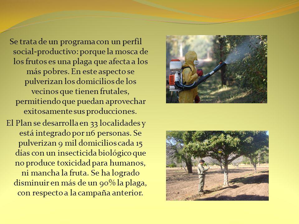 MERCADO CONCENTRADOR DE FRUTAS Y VERDURAS Con la creación del Mercado Concentrador de Frutas y Verduras, el Ministerio del Campo logró la comercialización de productos oriundos de San Luis y su inserción en el mercado local, nacional e internacional bajo la marca San Luis.