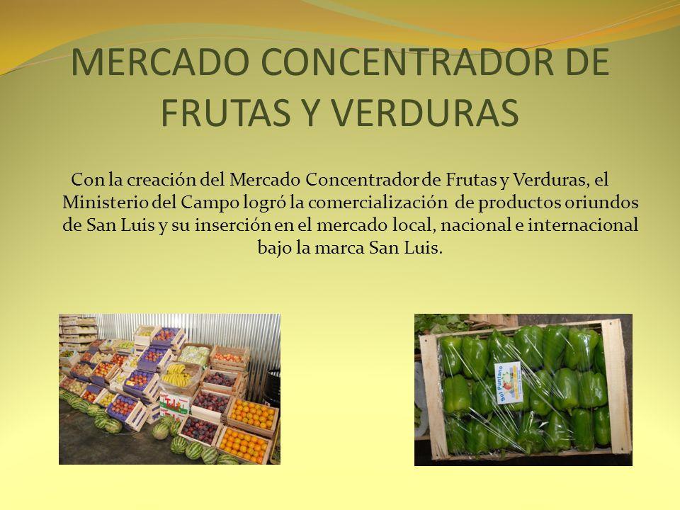 MERCADO CONCENTRADOR DE FRUTAS Y VERDURAS Con la creación del Mercado Concentrador de Frutas y Verduras, el Ministerio del Campo logró la comercializa