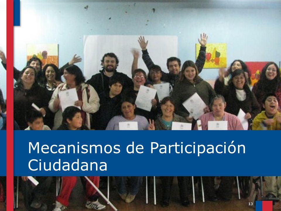 13 Mecanismos de Participación Ciudadana