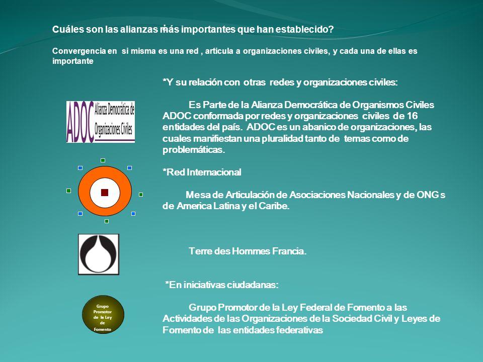 ¿ *Y su relación con otras redes y organizaciones civiles: Es Parte de la Alianza Democrática de Organismos Civiles ADOC conformada por redes y organi