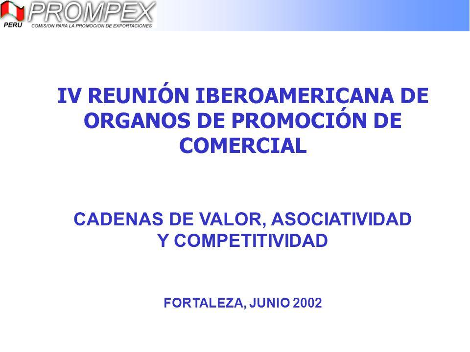 IV REUNIÓN IBEROAMERICANA DE ORGANOS DE PROMOCIÓN DE COMERCIAL CADENAS DE VALOR, ASOCIATIVIDAD Y COMPETITIVIDAD FORTALEZA, JUNIO 2002