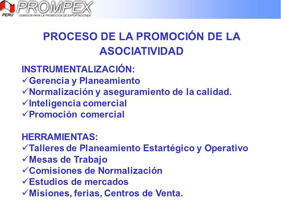 PROCESO DE LA PROMOCIÓN DE LA ASOCIATIVIDAD INSTRUMENTALIZACIÓN: Gerencia y Planeamiento Normalización y aseguramiento de la calidad. Inteligencia com
