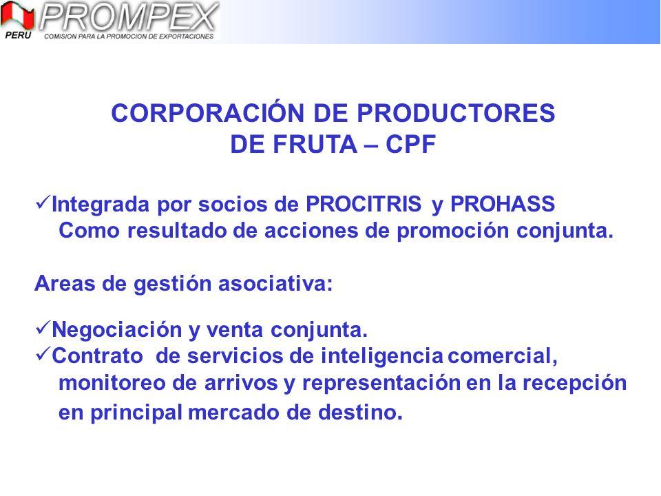 CORPORACIÓN DE PRODUCTORES DE FRUTA – CPF Integrada por socios de PROCITRIS y PROHASS Como resultado de acciones de promoción conjunta. Areas de gesti