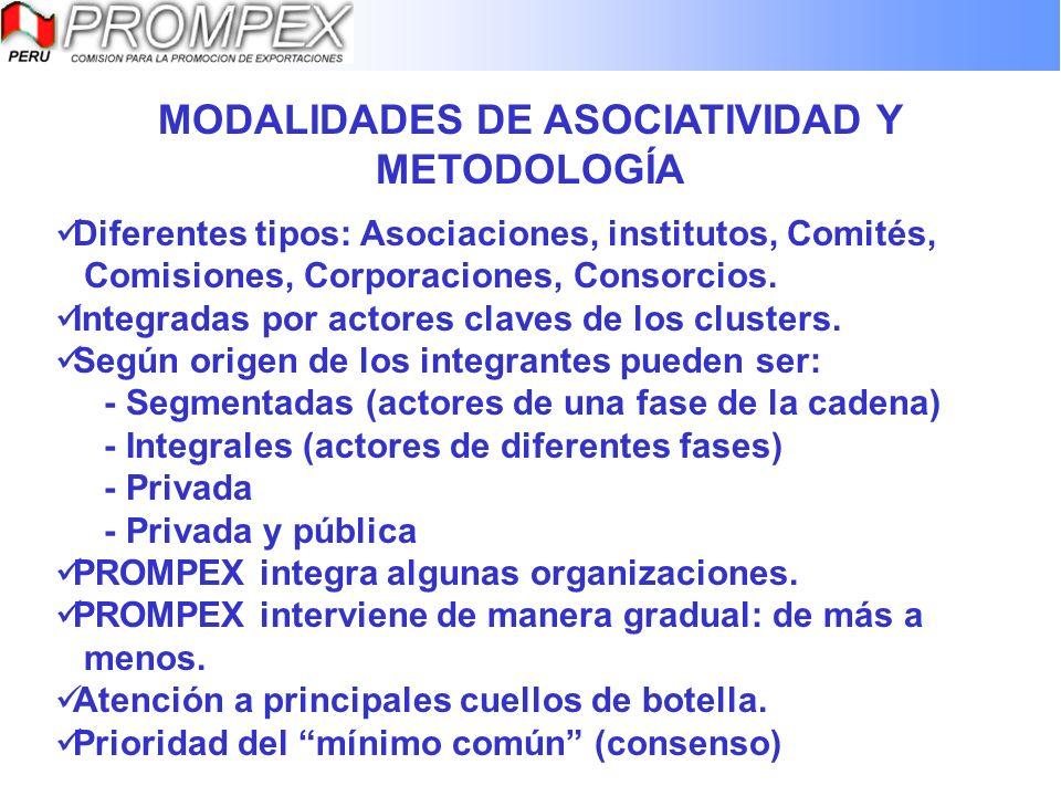 MODALIDADES DE ASOCIATIVIDAD Y METODOLOGÍA Diferentes tipos: Asociaciones, institutos, Comités, Comisiones, Corporaciones, Consorcios. Integradas por