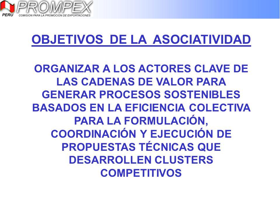 CORPORACIÓN DE PRODUCTORES DE FRUTA – CPF Integrada por socios de PROCITRIS y PROHASS Como resultado de acciones de promoción conjunta.