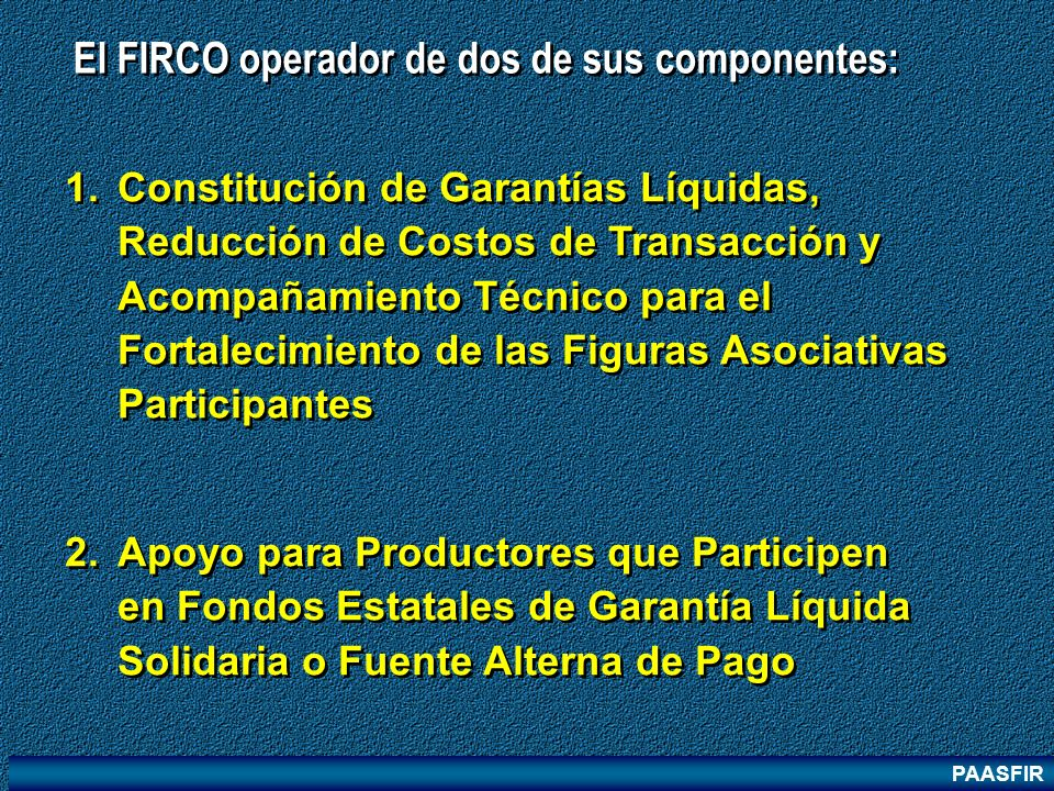 PAASFIR 1.Constitución de Garantías Líquidas, Reducción de Costos de Transacción y Acompañamiento Técnico para el Fortalecimiento de las Figuras Asoci