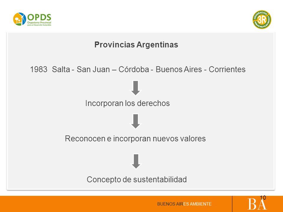 Provincias Argentinas Reconocen e incorporan nuevos valores Concepto de sustentabilidad Incorporan los derechos 1983 Salta - San Juan – Córdoba - Buen