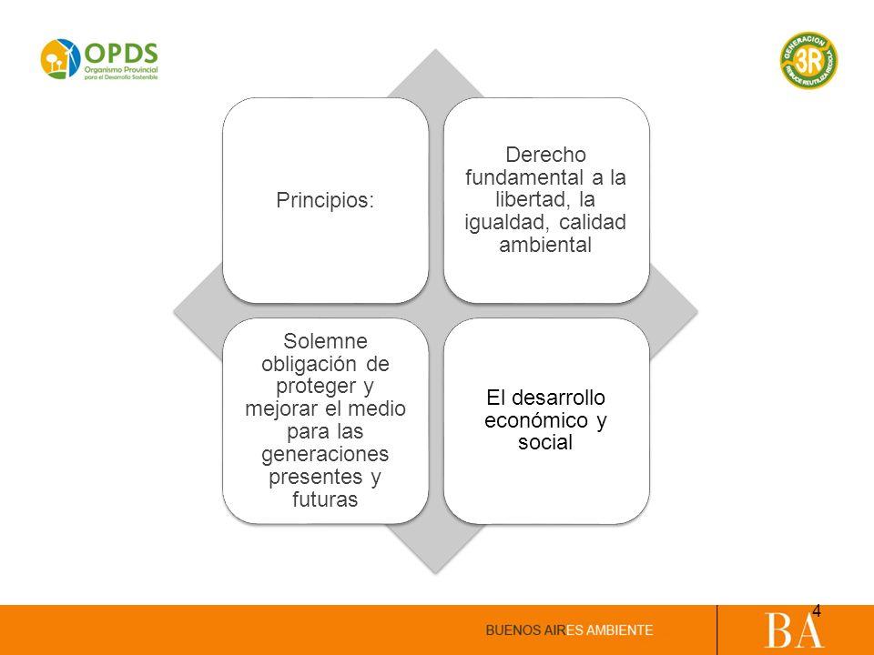 Principios: Derecho fundamental a la libertad, la igualdad, calidad ambiental Solemne obligación de proteger y mejorar el medio para las generaciones