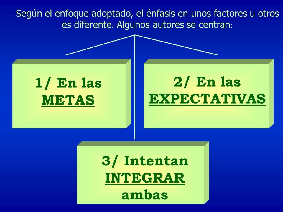 Según el enfoque adoptado, el énfasis en unos factores u otros es diferente. Algunos autores se centran : 1/ En las METAS 2/ En las EXPECTATIVAS 3/ In