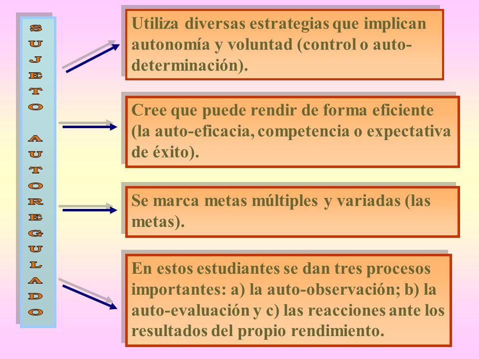 Utiliza diversas estrategias que implican autonomía y voluntad (control o auto- determinación). Cree que puede rendir de forma eficiente (la auto-efic