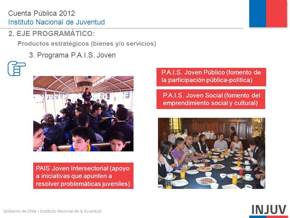 Gobierno de Chile | Instituto Nacional de la Juventud 2.
