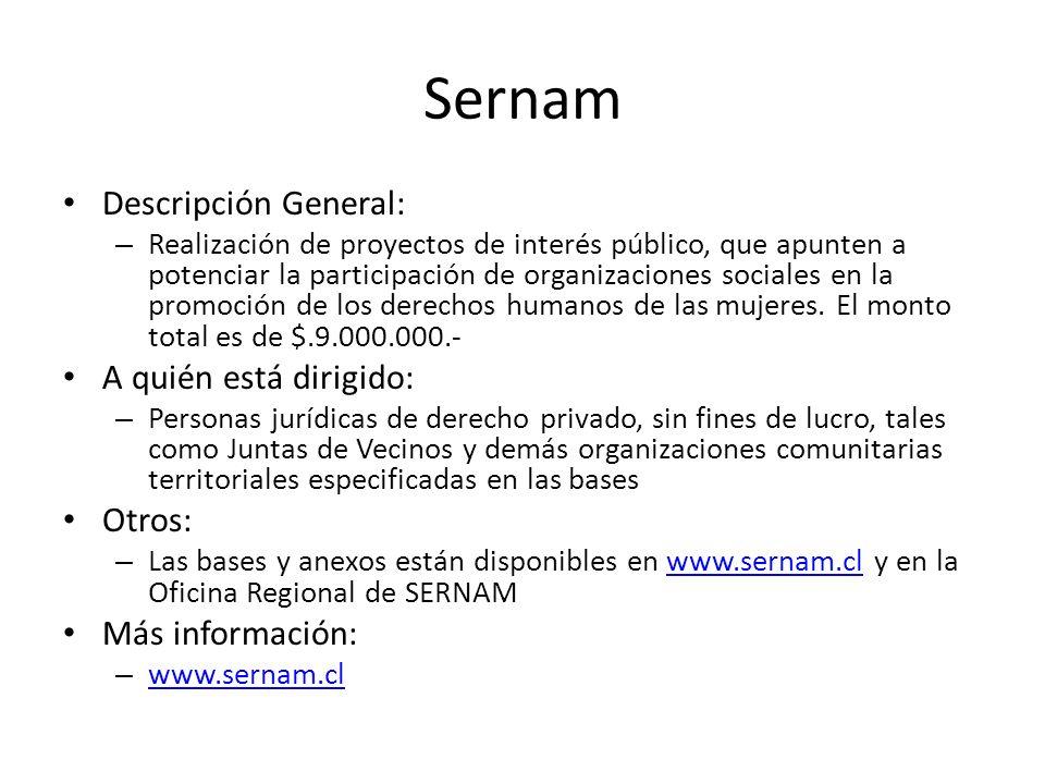 Sernam Descripción General: – Realización de proyectos de interés público, que apunten a potenciar la participación de organizaciones sociales en la p