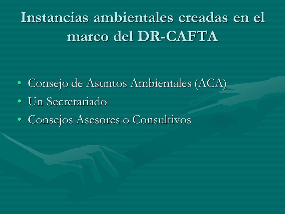 Instancias ambientales creadas en el marco del DR-CAFTA Consejo de Asuntos Ambientales (ACA)Consejo de Asuntos Ambientales (ACA) Un SecretariadoUn Sec