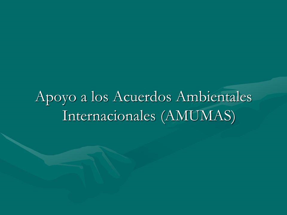 Apoyo a los Acuerdos Ambientales Internacionales (AMUMAS)