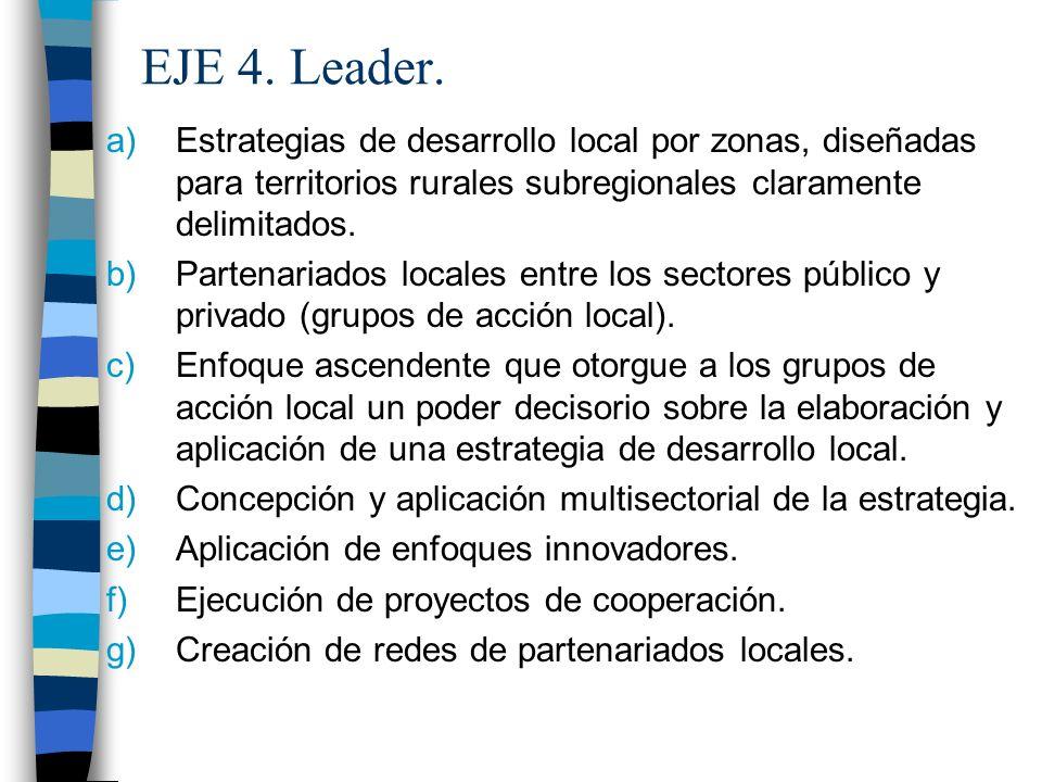 EJE 4. Leader.