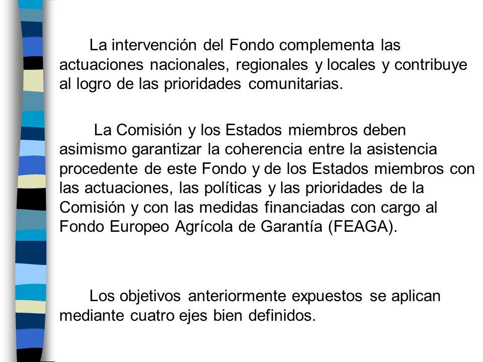 La intervención del Fondo complementa las actuaciones nacionales, regionales y locales y contribuye al logro de las prioridades comunitarias.