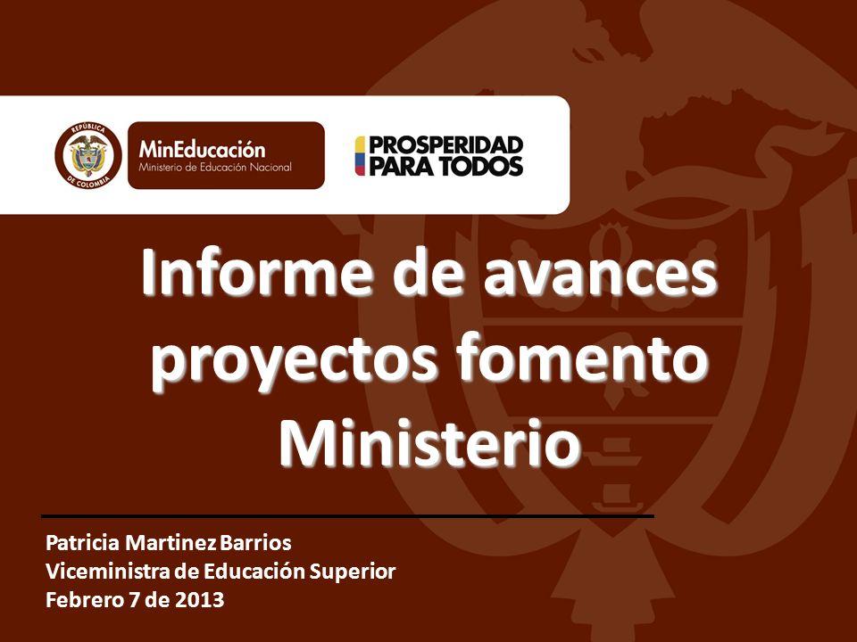 Informe de avances proyectos fomento Ministerio Patricia Martinez Barrios Viceministra de Educación Superior Febrero 7 de 2013