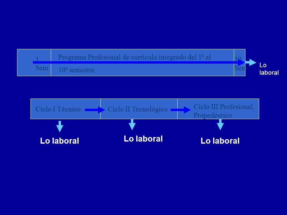 Programa Profesional de currículo integrado del 1º al 10º semestre 1 Sem 10 Sem Ciclo I TécnicoCiclo II Tecnológico Ciclo III Profesional, Propedéutic