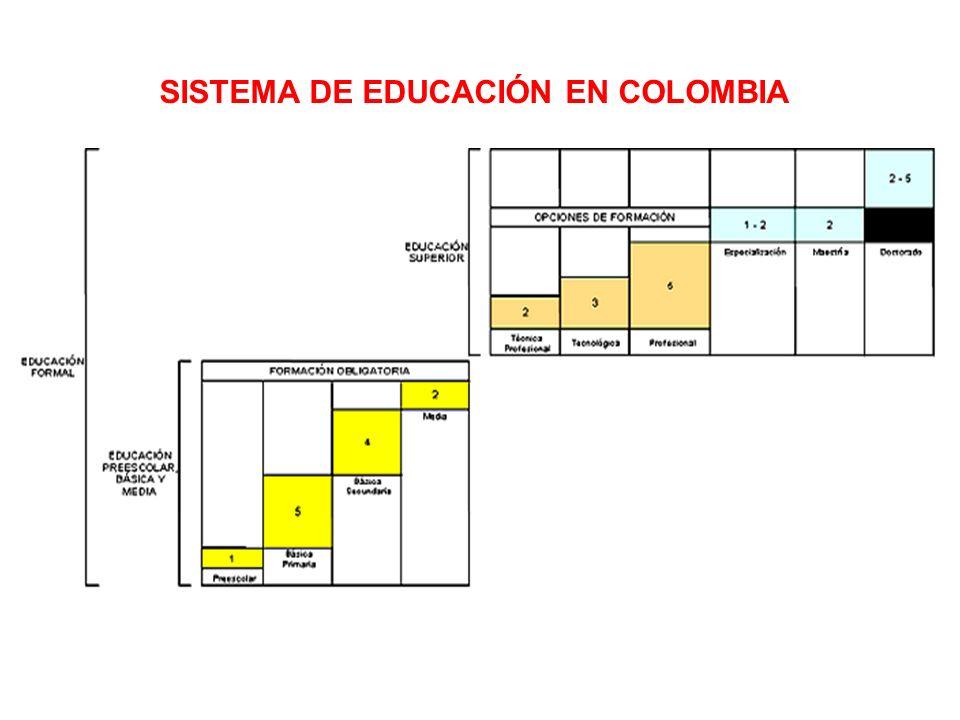 BASICA PRIMARIA MEDIA SUPERIOR 112 % 62 % 22,6 % BASICA SECUNDARIA 85 % COBERTURA EN EDUCACION