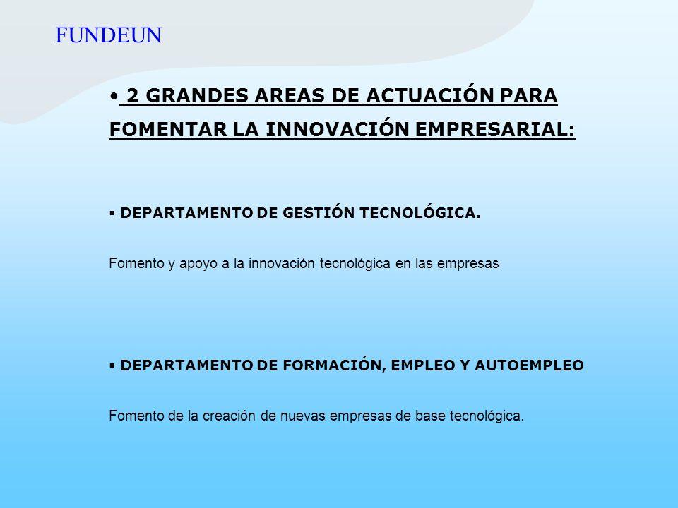 2 GRANDES AREAS DE ACTUACIÓN PARA FOMENTAR LA INNOVACIÓN EMPRESARIAL: DEPARTAMENTO DE GESTIÓN TECNOLÓGICA. Fomento y apoyo a la innovación tecnológica