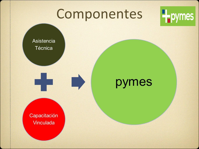 Componentes Asistencia Técnica Capacitación Vinculada pymes