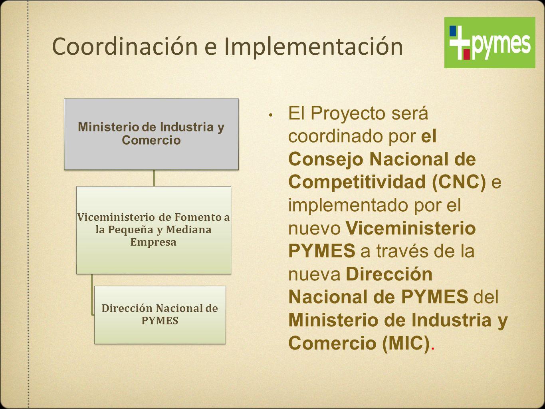 Ministerio de Industria y Comercio Viceministerio de Fomento a la Pequeña y Mediana Empresa Dirección Nacional de PYMES El Proyecto será coordinado po