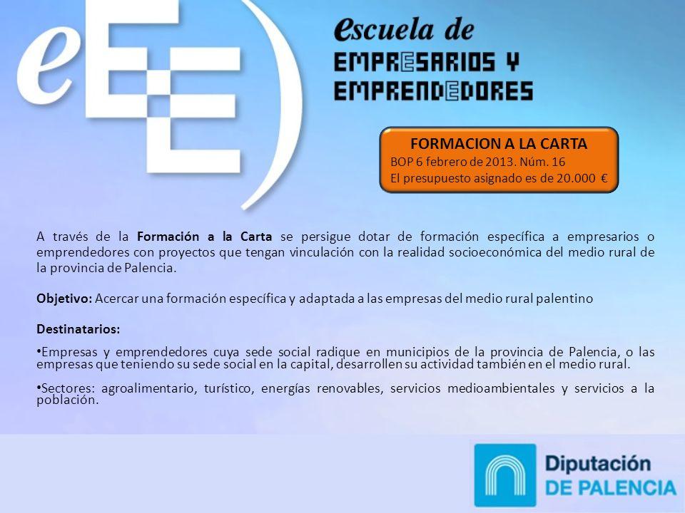 A través de la Formación a la Carta se persigue dotar de formación específica a empresarios o emprendedores con proyectos que tengan vinculación con la realidad socioeconómica del medio rural de la provincia de Palencia.