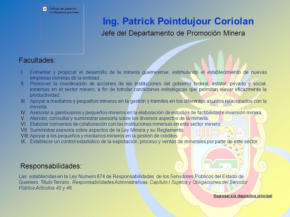 Ing. Patrick Pointdujour Coriolan Facultades: Responsabilidades: Regresar a la diapositiva principal Jefe del Departamento de Promoción Minera I.Fomen