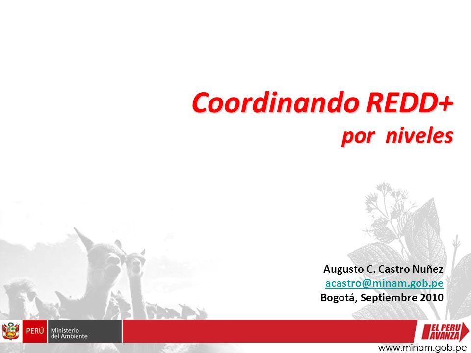 Augusto C. Castro Nuñez acastro@minam.gob.pe Bogotá, Septiembre 2010 Coordinando REDD+ por niveles