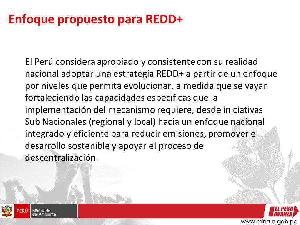 Enfoque propuesto para REDD+ El Perú considera apropiado y consistente con su realidad nacional adoptar una estrategia REDD+ a partir de un enfoque por niveles que permita evolucionar, a medida que se vayan fortaleciendo las capacidades específicas que la implementación del mecanismo requiere, desde iniciativas Sub Nacionales (regional y local) hacia un enfoque nacional integrado y eficiente para reducir emisiones, promover el desarrollo sostenible y apoyar el proceso de descentralización.