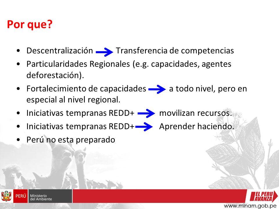 Descentralización Transferencia de competencias Particularidades Regionales (e.g.