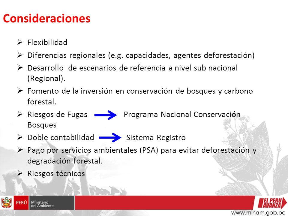 Flexibilidad Diferencias regionales (e.g.