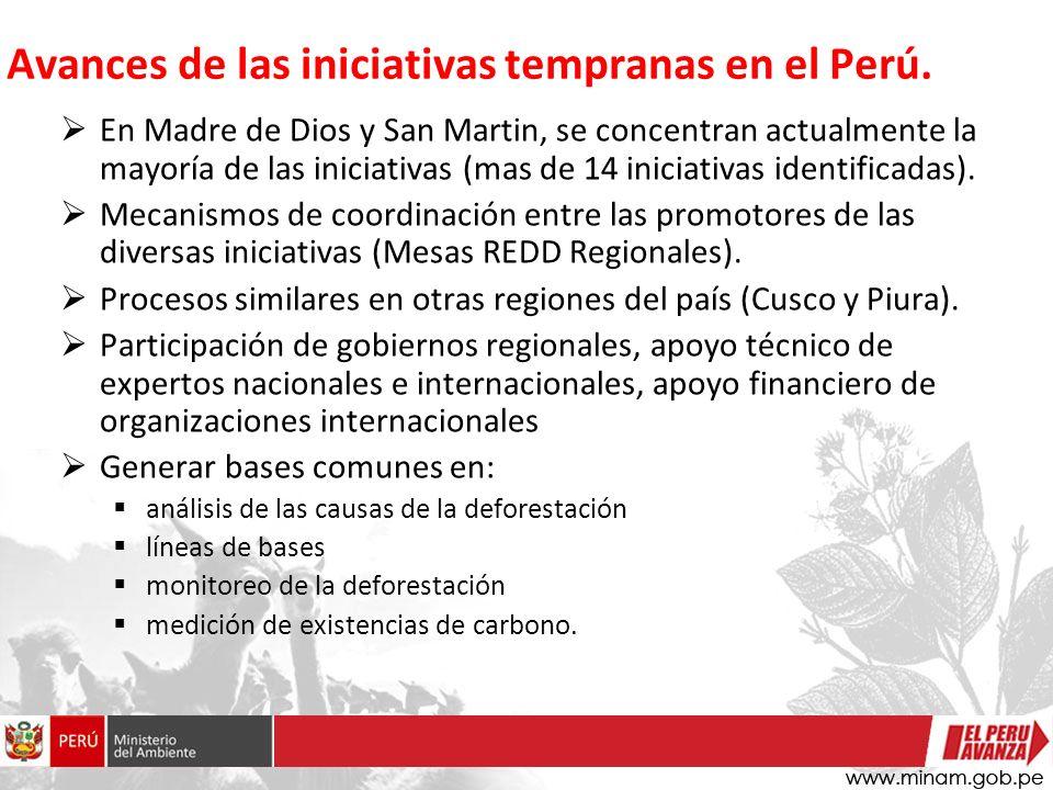 En Madre de Dios y San Martin, se concentran actualmente la mayoría de las iniciativas (mas de 14 iniciativas identificadas).