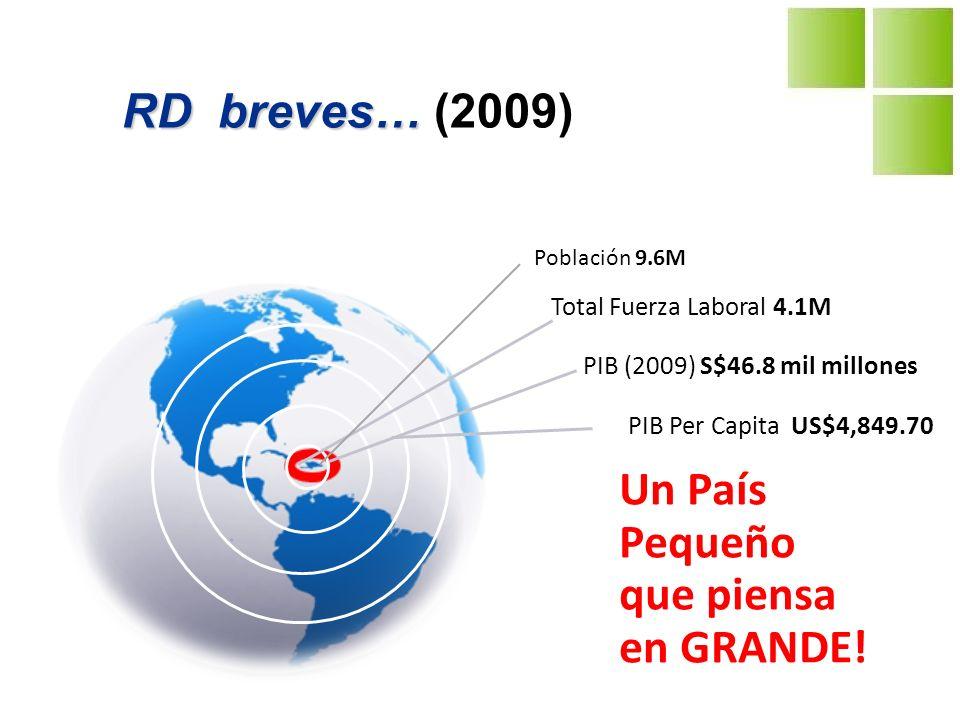 Source: CEPAL PIB 2003-2009 República Dominicana 1.3 9.3 10.7 8.5 5.3 2.5 -0.3 -4.0 -2.0 0.0 2.0 4.0 6.0 8.0 10.0 12.0 2003200420052006200720082009 República Dominicana América Latina Presidente Fernandez Crisis Financiera