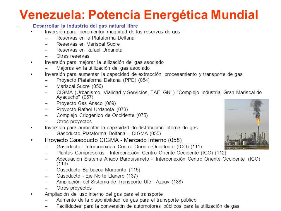 –Desarrollar la industria del gas natural libre Inversión para incrementar magnitud de las reservas de gas –Reservas en la Plataforma Deltana –Reserva