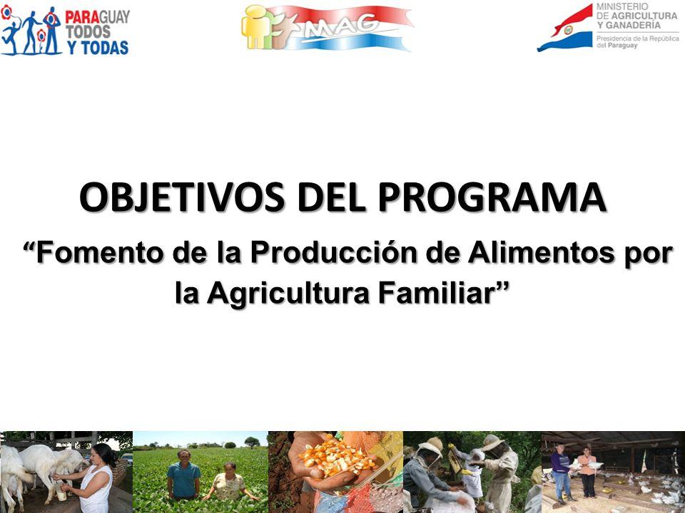 OBJETIVOS DEL PROGRAMA Fomento de la Producción de Alimentos por la Agricultura Familiar Fomento de la Producción de Alimentos por la Agricultura Fami