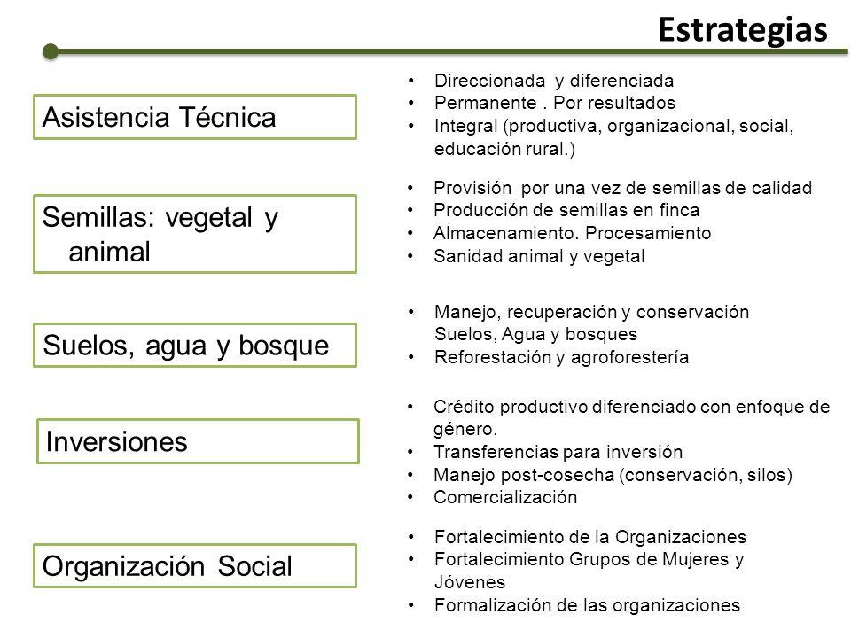 Estrategias Semillas: vegetal y animal Suelos, agua y bosque Manejo, recuperación y conservación Suelos, Agua y bosques Reforestación y agroforestería