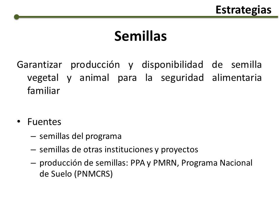 Semillas Garantizar producción y disponibilidad de semilla vegetal y animal para la seguridad alimentaria familiar Fuentes – semillas del programa – s