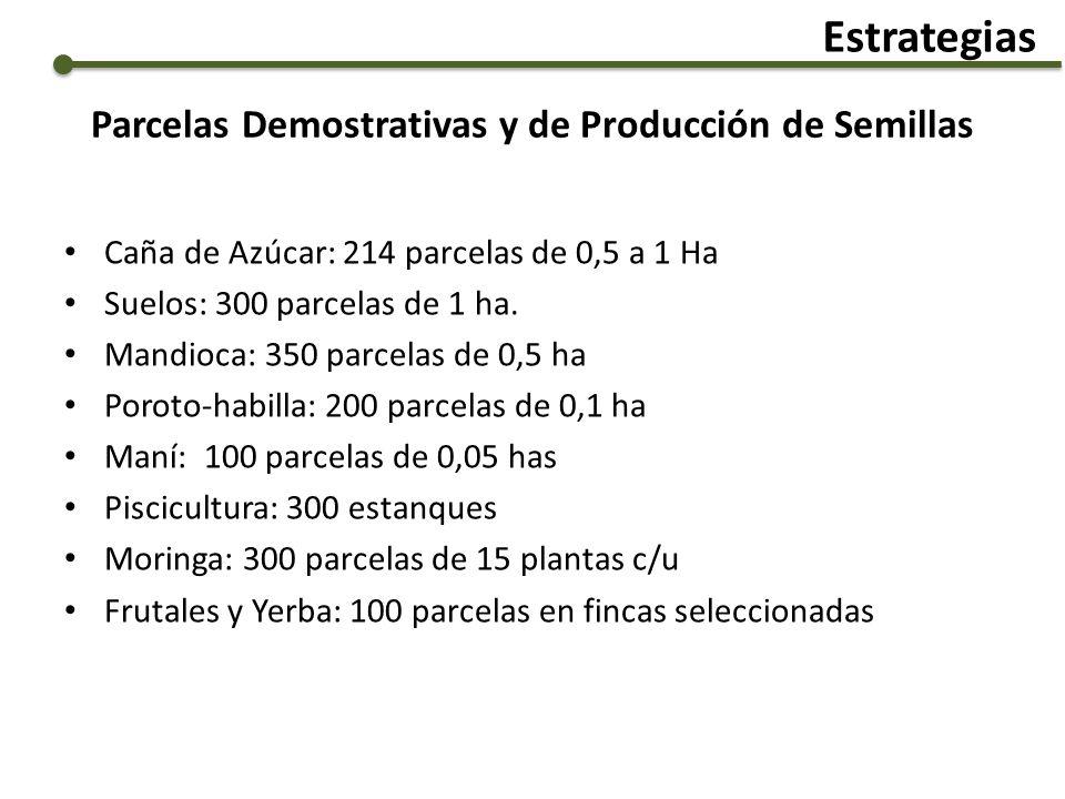Parcelas Demostrativas y de Producción de Semillas Caña de Azúcar: 214 parcelas de 0,5 a 1 Ha Suelos: 300 parcelas de 1 ha. Mandioca: 350 parcelas de