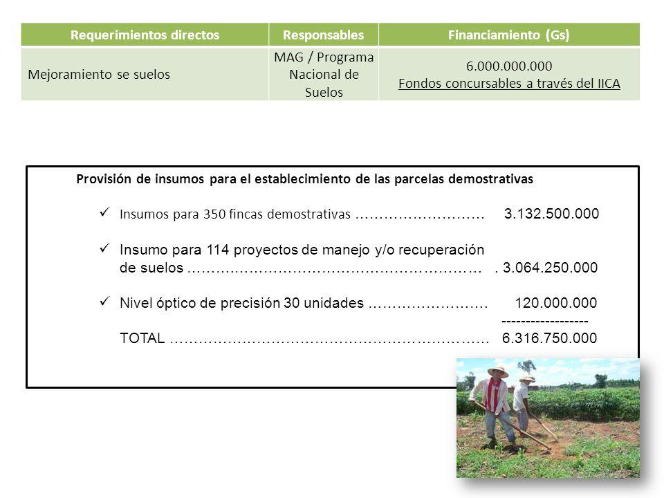 Requerimientos directosResponsablesFinanciamiento (Gs) Mejoramiento se suelos MAG / Programa Nacional de Suelos 6.000.000.000 Fondos concursables a tr